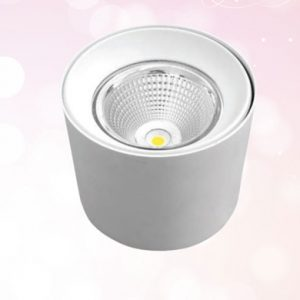 đèn downlight tròn ốp nổi MDL05